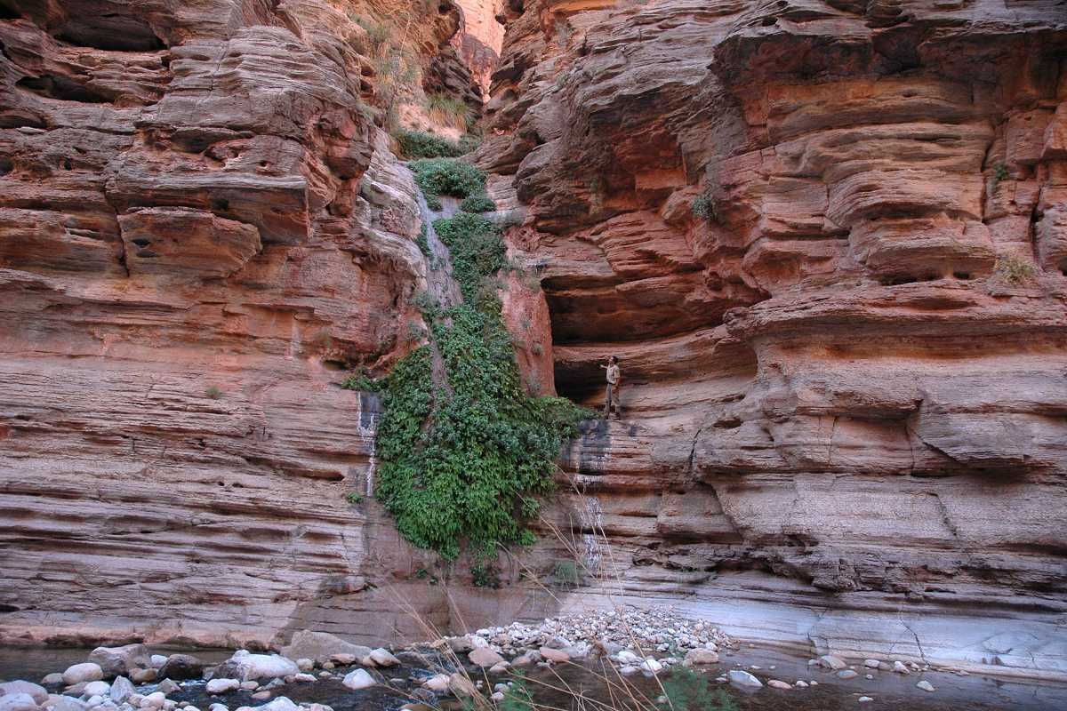 Another Spring In Kanab Canyon