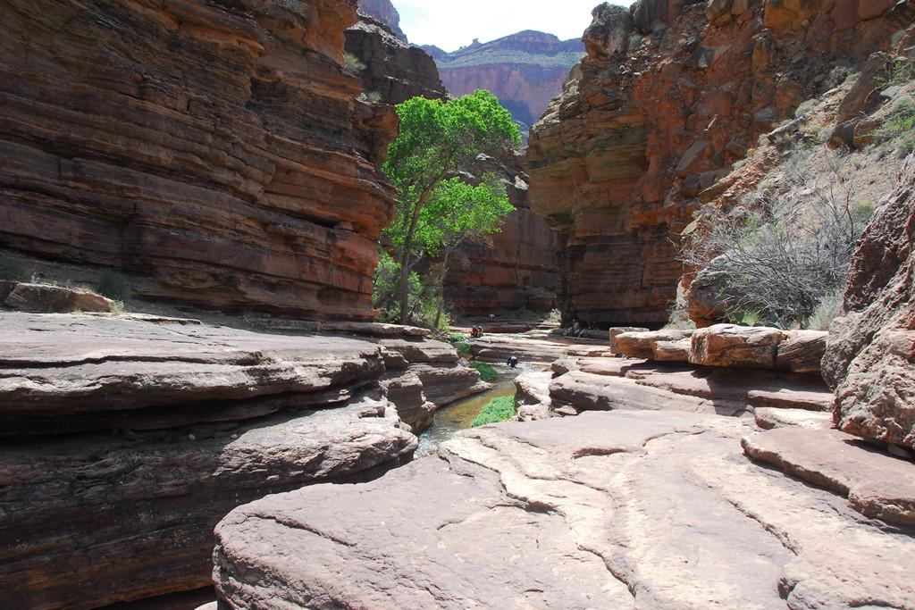 The Patio Deer Creek Narrows Grand Canyon