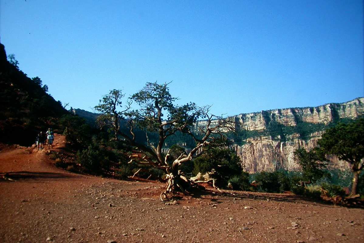 Hikers arriving at cedar ridge south kaibab trail for Ceder ridge